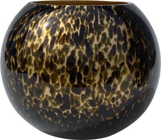Zambezi golden cheetah